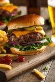 Gräs Fed Bison Hamburger Royaltyfri Foto