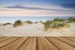 Gräs- landskap för sanddyn på soluppgång med träplankagolvet Royaltyfria Foton