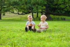 gräspicknick Fotografering för Bildbyråer