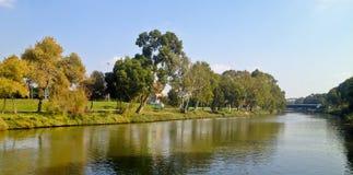 Gräsplan parkerar floden Royaltyfri Fotografi