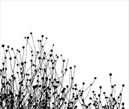 grässilhouettevektor Arkivbilder