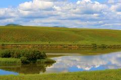 Grässlättlandskap Arkivfoto