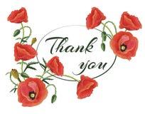 Gruß-Karte danken Ihnen mit Mohnblumen Stockfoto