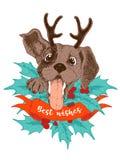 Grußkarte der frohen Weihnachten Glücklicher Spürhundwelpe mit dem Geweih, den Stechpalmenbrunchs und den Beeren stock abbildung