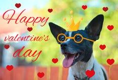 Grußkarte für Valentinstag, mit einem netten Pug Karikaturhund mit Krone und Gläser und Herz Illustration für eine Postkarte oder stockfotos