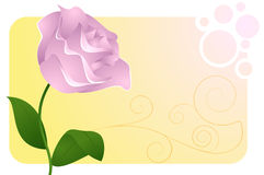 Grußkarte mit Blume stock abbildung