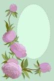 Grußkarte mit einem Blumenstraußrahmen Rosafarbene Pfingstrose-Knospen Vektor Lizenzfreie Stockbilder
