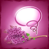 Grußkarte mit lila Blumen Stockbild