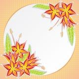 Grußkarte mit orange Blumen Stockfoto