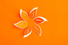 Grußkarte mit Papierblume Stockbild