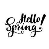 Grußkarte mit Phrase: Hallo Frühling Vektor lokalisierte Illustration: Bürstenkalligraphie, Handbeschriftung inspirational stock abbildung