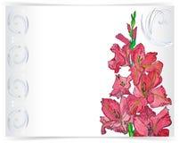 Grußkarte mit rosa Blume und Verzierung vektor abbildung