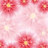 Grußkarte mit roten Blumen vektor abbildung