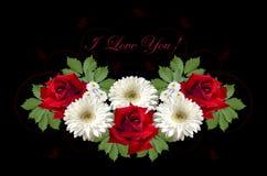 Grußkarte mit roten Rosen und weißen Gerberas auf einem schwarzen Hintergrund Stockfotografie