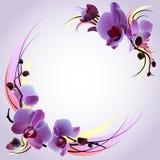 Grußkarte mit violetten Orchideen lizenzfreie abbildung