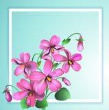 Grußkarte Violet Floral-Hintergrund in einem weißen Rahmen Vektor lizenzfreie abbildung