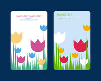 Grußkartenblume 1 Stock Abbildung