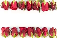 Grußkartenrahmen von roten Rosen auf einem weißen Hintergrund mit Spindel Lizenzfreie Stockfotos