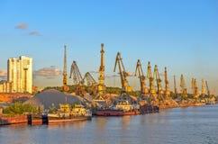 Gru del carico in porto Immagine Stock Libera da Diritti