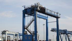 Gru del container Immagine Stock Libera da Diritti
