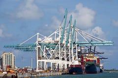 Gru del porto Immagini Stock