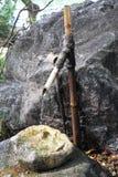 Gru di bambù giapponese tradizionale Tsukubai Fotografia Stock