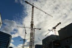 Gru di costruzione alte Immagine Stock