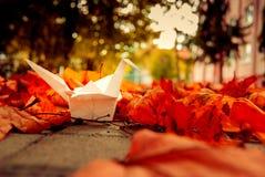 Gru di origami di autunno Fotografie Stock