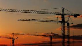 Gru di tramonto fotografie stock libere da diritti