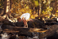 Gru di yoga Fotografia Stock