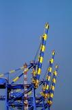 Gru industriali nel porto marittimo del Kochi Fotografia Stock