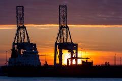 Gru industriali in un porto al tramonto fotografia stock