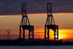 Gru industriali in un porto al tramonto fotografia stock libera da diritti