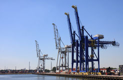 Gru nel porto di Rotterdam, Paesi Bassi Fotografie Stock Libere da Diritti