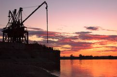 Gru sulla riva del fiume Immagine Stock