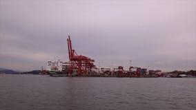 Gru terminali dell'oceano della nave industriale del carico video d archivio