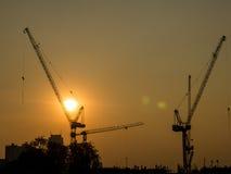 Gru a torre su un cantiere ad alba Fotografie Stock Libere da Diritti