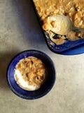 Gruau de potiron d'amaranthe avec du lait de noix de coco et les canneberges sèches Images libres de droits