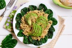Gruau de quinoa avec les tranches fraîches d'épinards et d'avocat Salade d'avocat d'épinards de quinoa de Vegan d'un plat blanc F Photos stock