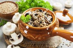 Gruau de sarrasin avec des champignons de couche Images stock
