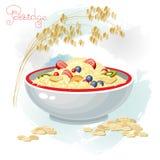 Gruau et fruits dans la cuvette d'isolement sur le fond blanc illustration stock