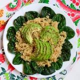 Gruau simple de quinoa Quinoa sain avec les épinards et l'avocat d'un plat blanc Vue supérieure Photos libres de droits