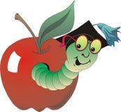 Grub and apple Royalty Free Stock Image