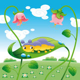 Grub on the leaf. Funny cartoon and vector character Royalty Free Stock Image