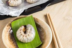 Grub Worms or Coconut Rhinoceros Beetle. Insects food for eating larvae fried or baked on plate with chopsticks and on baking tray. It is good source of royalty free stock photo