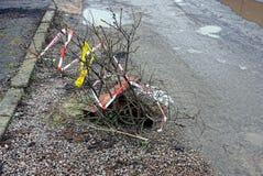 Grube auf der Straße mit Baumasten Stockfoto