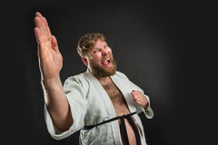 Gruby karate wojownik Obrazy Stock