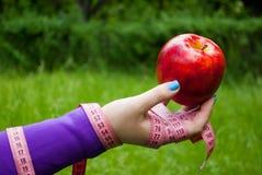Gruby kobiety zakończenie prawa ręka trzyma wielkiego czerwonego jabłka Obraz Royalty Free