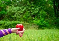 Gruby kobiety zakończenie prawa ręka trzyma wielkiego czerwonego jabłka Zdjęcia Stock