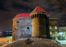 Gruby Margaret dekorujący dla bożych narodzeń, Tallinn Zdjęcie Royalty Free